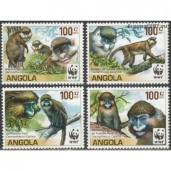 Angola 2011. Monkeys (macacos)