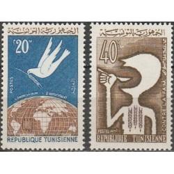 Tunisas 1963. Kampanija...