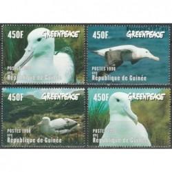 Guinea 1998. Marine birds...