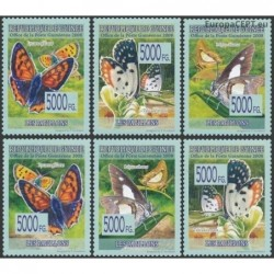 Guinea 2008. Butterflies