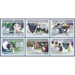 Guinea 2009. Monkeys