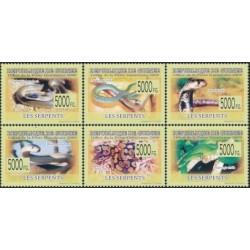 Guinea 2009. Snakes