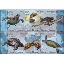 Guinea-Bissau 2005. Turtles