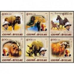 Guinea-Bissau 2005. African...