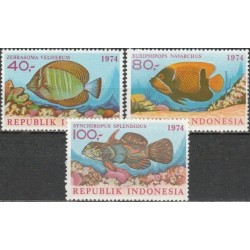 Indonesia 1974. Fishes