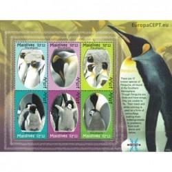 Maldives 2007. Penguins
