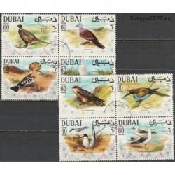 Dubajus 1968. Paukščiai