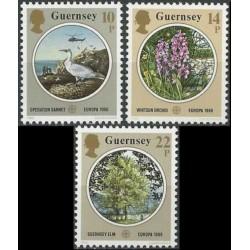 Guernsey 1986. Nature...