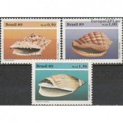 Brazil 1989. Sea shells