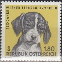 Austria 1966. Dog